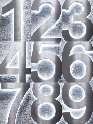 RVS 3D 20cm WIT LED Huisnummer inclusief 12 volt netvoeding adapter